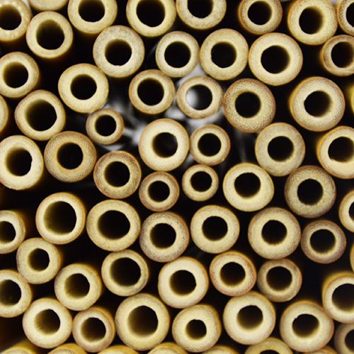 100 Pailles en bambou