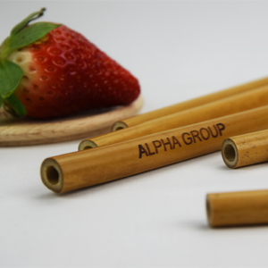Alpha-Group-personnalisation