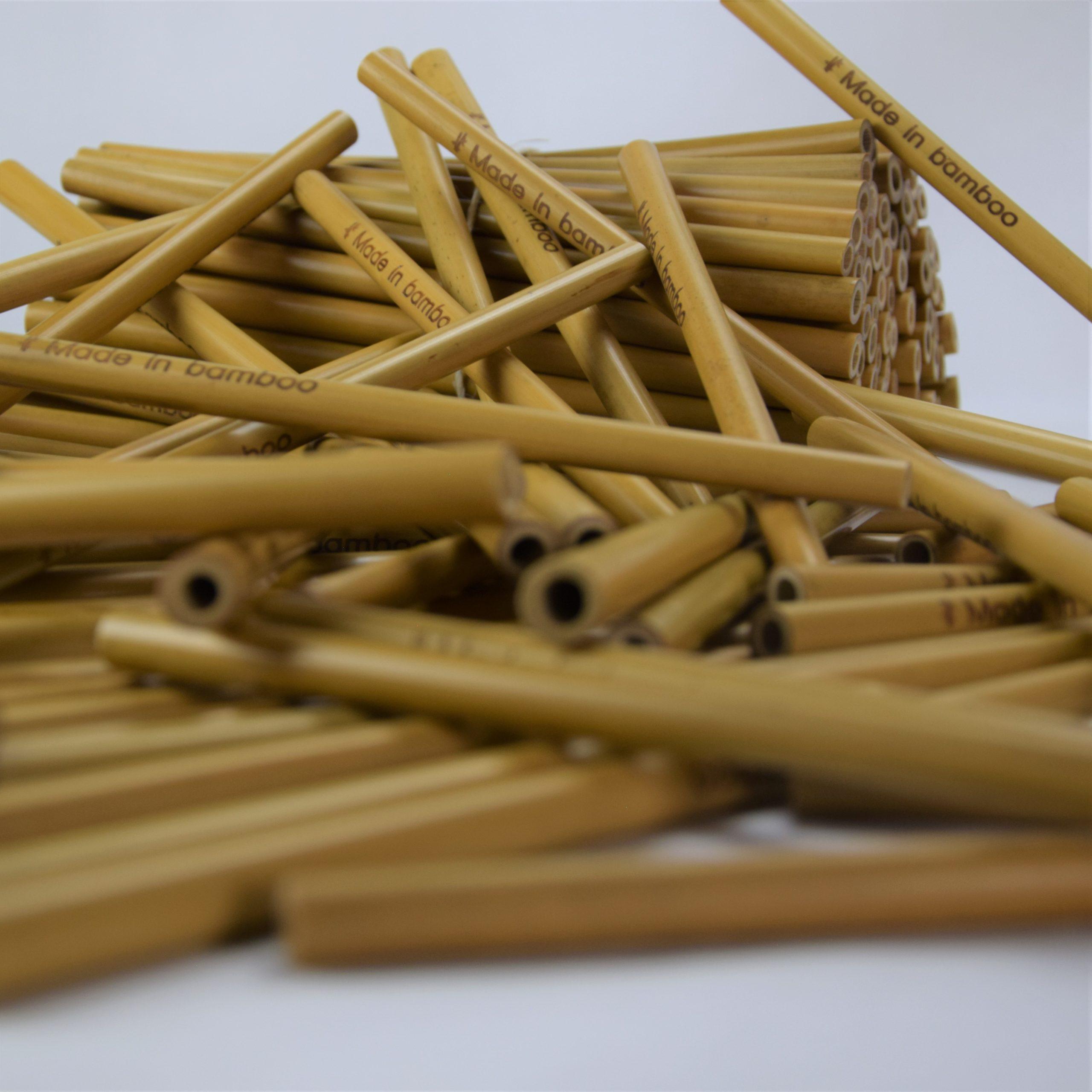 Hanoi set 100 pailles en bambou personnalisées